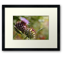 Meanwhile in Scotland... Framed Print