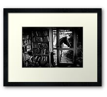 Visitor Framed Print