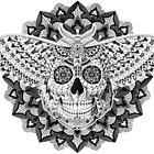 Skull Moth by BioWorkZ