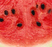 Watermelon Sticker