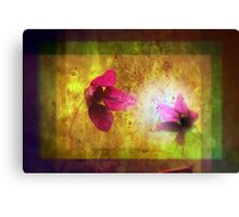 marriage of Titania; Salmon berry floral duet Canvas Print