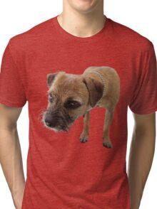 Young female border terrier Tri-blend T-Shirt