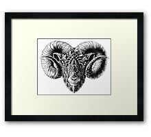 Ram Head Framed Print