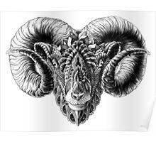 Ram Head Poster
