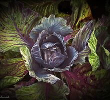 Whispers from the Cabbage patch by © Kira Bodensted
