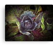 Whispers from the Cabbage patch Canvas Print