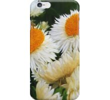 A touch of Vincent iPhone Case/Skin