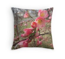 A Spring Bloom Throw Pillow