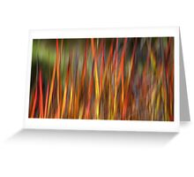 Wild Grass Greeting Card