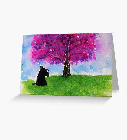 Scottie Dog 'Cherry Blossom Tree' Greeting Card