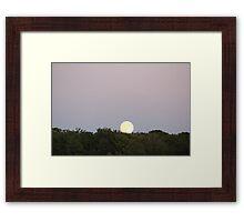 A Summer Night Framed Print