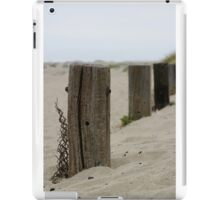 Old Fence Poles iPad Case/Skin