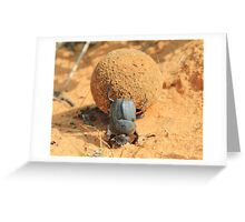 Got to Love your Job - Dung Beetle Bounty Greeting Card