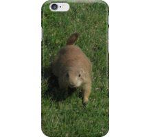 Prairie Dog #1 - V1 iPhone Case/Skin