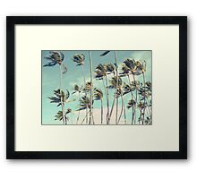Hawaii Palm Trees In The Wind Framed Print