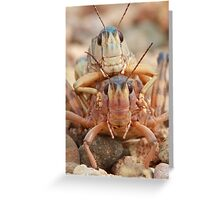 Face-to-Face Encounter Greeting Card