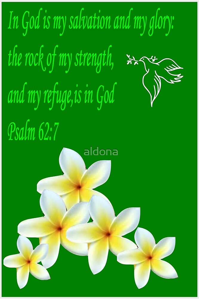 Psalm 2:7 ( 1075 Views) by aldona