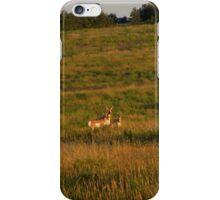 Pronghorn Antelope #2 - V1 iPhone Case/Skin