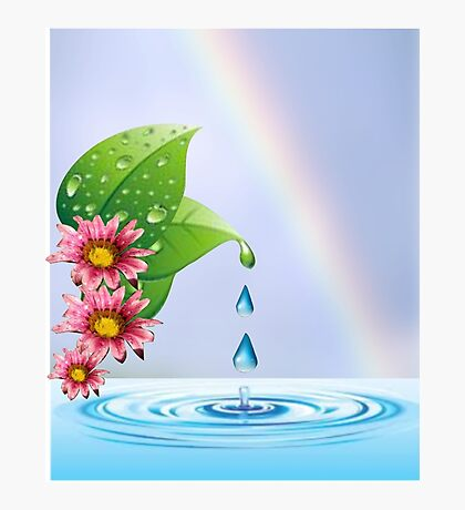 Water droplets (6432  Views) Photographic Print