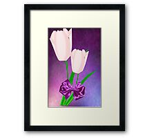 2 Pink Tulips (8896 Views) Framed Print