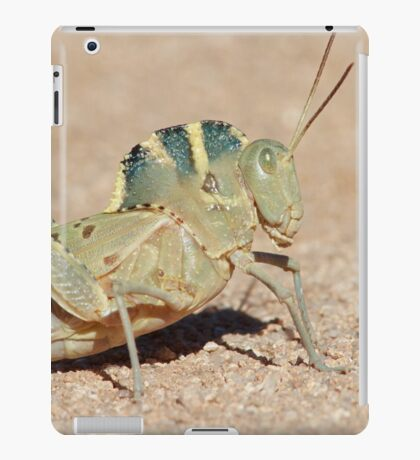 Grasshopper with a Hump iPad Case/Skin