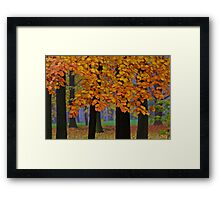 Top selling . Views: 16936 ♥ ♥ ♥ series . Forever Autumn   . Eye-catcher - For Sure ! Fav: 76.  Thx friends ! muchas gracias !!! This image Has Been S O L D . Buy what you like!  Framed Print