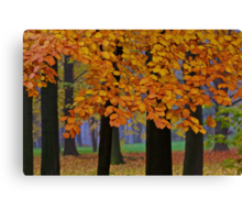 Top selling . Views: 16936 ♥ ♥ ♥ series . Forever Autumn   . Eye-catcher - For Sure ! Fav: 76.  Thx friends ! muchas gracias !!! This image Has Been S O L D . Buy what you like!  Canvas Print