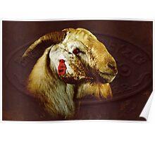 Billy goat Boer  Poster