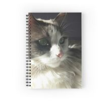 Le Chat Gris un Blanc Spiral Notebook