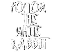 Follow the white rabbit... no. 2 Photographic Print
