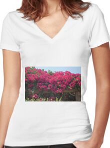 Flowers and a Trellis Women's Fitted V-Neck T-Shirt