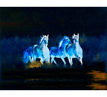 Horses Painting  Photographic Print