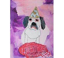Bonnie Bulldog by Mary Photographic Print