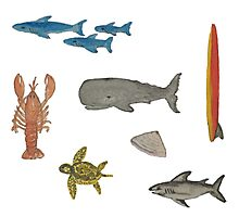 Sea Life Hand-Painted Watercolors of Whale, Shark, Lobster  Photographic Print