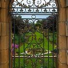 Gate to Rose Garden by Yukondick