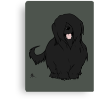 Black Briard - Yes, I have eyes Canvas Print
