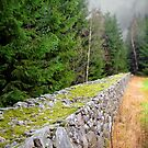 a wall to walk on by globeboater