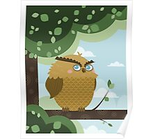 Owl in a branch Poster