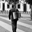 Street Musician by Lynn Bolt