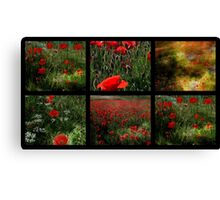 Umbrian Poppies Collage Canvas Print