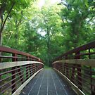 Bridge in Riverbend Park, VA by Bine