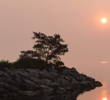 Misty Sunrise on the Lake - Soft Pink Fog and Sunshine Sticker