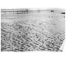 Wet Sand Poster