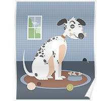 Dog with a bone in his mouth Poster