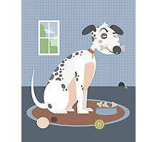 Dog with a bone in his mouth Photographic Print