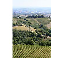 Chianti nearby Photographic Print
