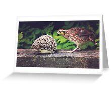 Hedgehog and Quail Greeting Card