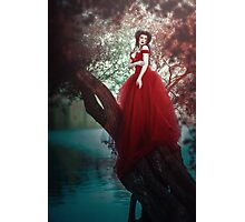Crimson Queen Photographic Print