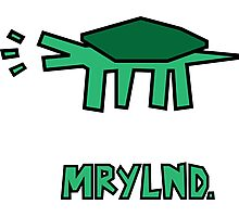 Keith Haring styled turtle Photographic Print