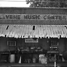 LaVene Music Center / Red's Blues Club by AnalogSoulPhoto